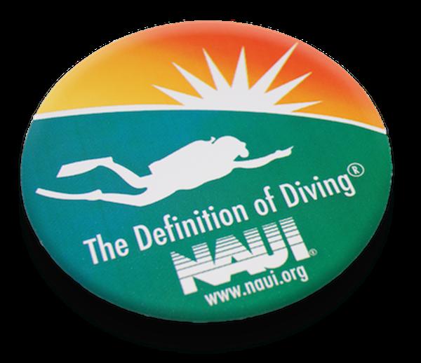 NAUI Logo Decal
