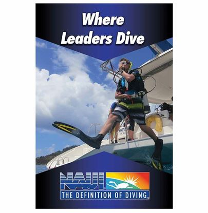 Where leaders Dive Poster