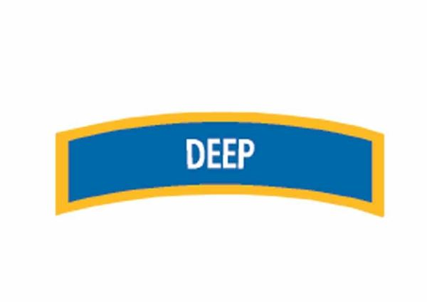 Picture of Decal,  Specialty Deep Diver Chevron