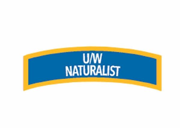 Picture of Decal,  Specialty Underwater Naturalist Diver Chevron