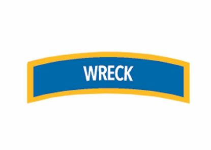 Picture of Decal,  Specialty Wreck External Survey Chevron