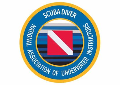 Picture of Decal, NAUI Scuba Diver
