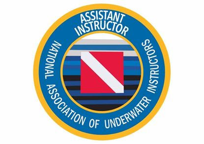 Picture of Decal, NAUI Assistant Instructor