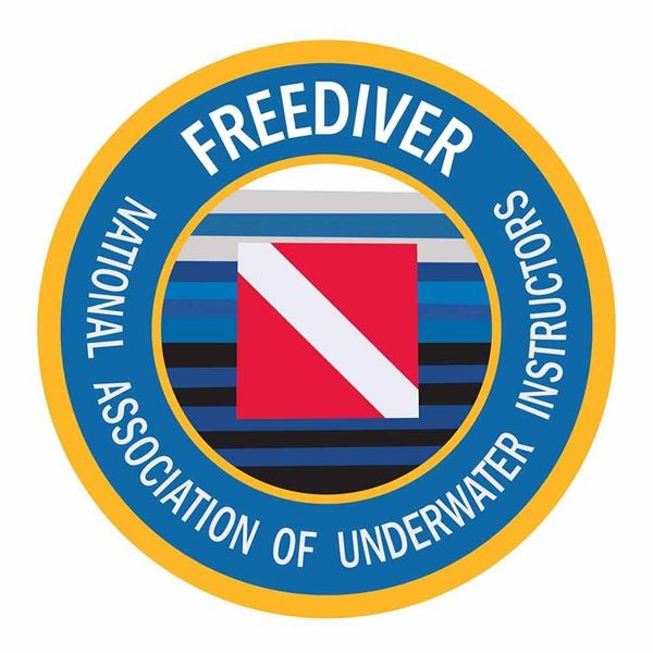 Picture of Decal, Freediver